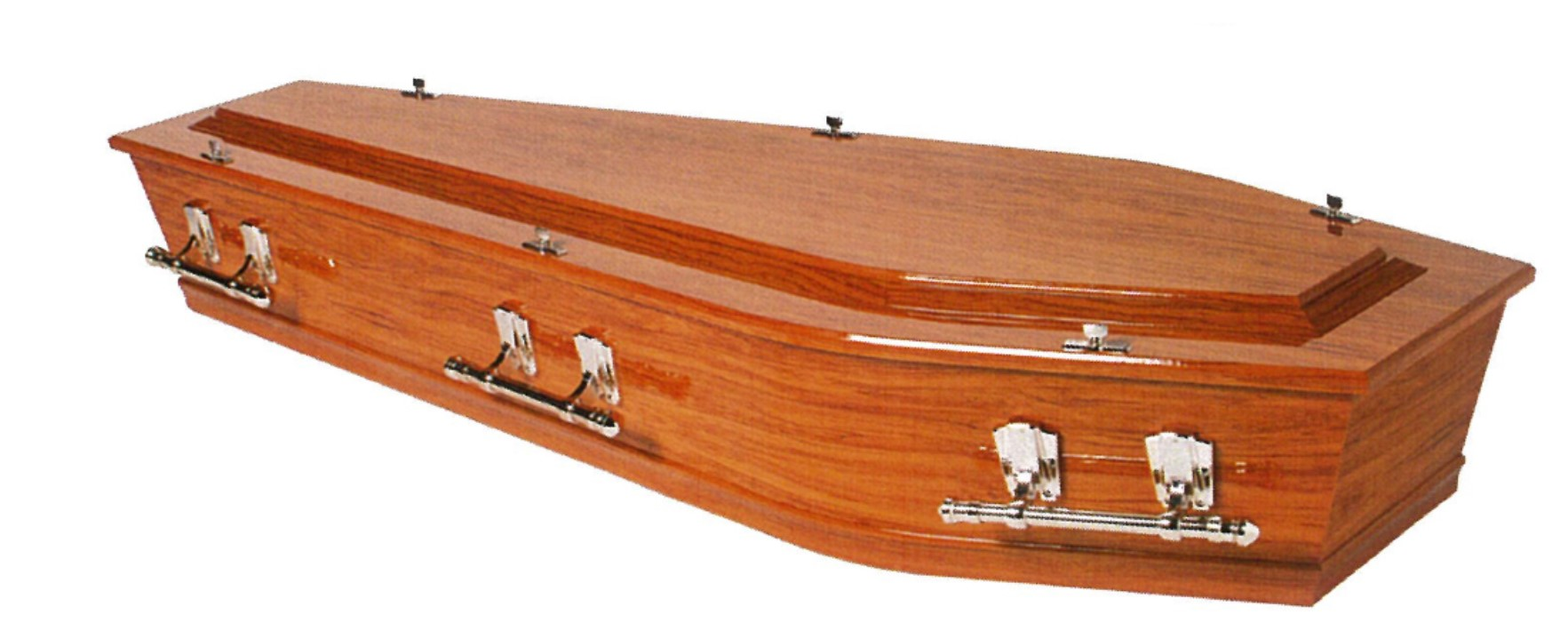 Caskets and Coffins - Faithfull Funeral Services Ph 09-421 9844